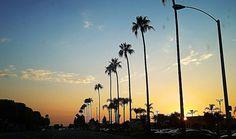 Summer nights City of Orange California. #summernights #summer #findbeautywherryouare #colorfulsky #sunset #sun #palmtrees #silouette #travelspiritually #travellocal #orangeca #orangecounty #orangecalifornia #cityoforange #california #ca #outplanettravel