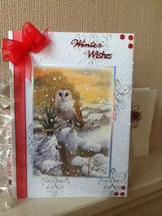 Christmas card using Hunky Dorys Little book of festive birdsong. Z Cards, Bird Cards, Greeting Cards, Xmas Cards Handmade, Tambour Beading, Lesage, Heartfelt Creations, Little Books, Pattern Paper