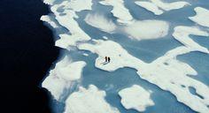 Before the Flood: Leonardo DiCaprio's climate change documentary exclusive clip | EW.com