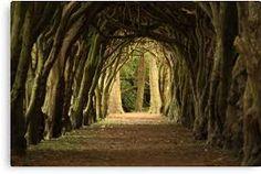 medieval walkway cloister