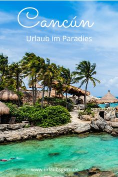 Cancún ist ein Paradies! Hier kann man am Strand entspannen, Aktivurlaub machen und auch ordentlich Party machen. Seht selbst!