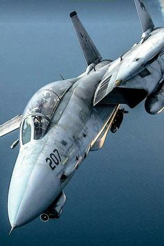 F 14 tomcat Military Jets, Military Weapons, Military Aircraft, F14 Tomcat, Airplane Fighter, Fighter Aircraft, Air Fighter, Fighter Jets, Fighter Pilot