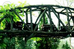 Linda Cox  Bridge Among The Trees  #modeltrain #gscaletrain #clarkgardens #botanicalgardens