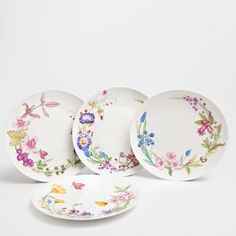 Wildflower Plates (set of 4) Dinnerware - Tableware | Zara Home Sweden