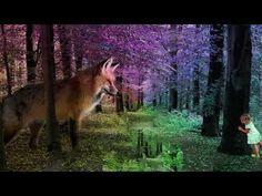 The Journey, Fairy Tales, Aquarium, Mindfulness, Cinema, Relax, Horses, Youtube, Animals