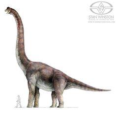 Alternate Brachiosaurus color scheme
