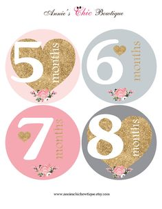 monthly baby stickers baby month stickers baby girl month stickers
