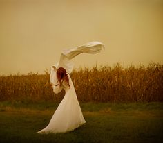 Of the corn by Patty Maher, via Flickr