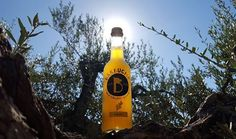 When it's the middle of Winter & it's still 131 days till Summer & you're missing those warm, sunny days. Pictured our Ginger booch, being sun kissed on top of an old olive tree, somewhere in Italian Umbria. #bärbuchakombucha #kombucha #ersterberlinerkombucha #kombuchaberlin #unpasteurized #rawfood #rohkost #fermented #guthealth #berlinkombucha #probiotic #probiotisch #probiotics #vegetarian #vegetarisch #vegan #booch #madeinberlin #berlin #kombucharevolution #kombuchalove #kombuchatea…