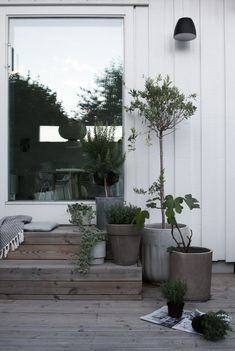 The concrete planters fit the mood of the weathered wood on these steps.