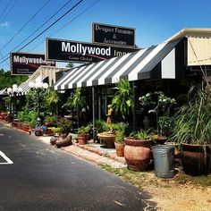 #Mollywoodimports    #Regram via @www.instagram.com/p/ZV-UT-Rixu/?taken-at=501139276