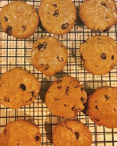 A vegan version of holiday breakfast cookies by Autoimmune Wellness, with a few rolled in amaranth flour to give them a little crunch. Sub in sweet potato for pumpkin if you can't have gourds. Food Intolerance, Celiac Disease, Breakfast Cookies, Food Allergies, Autoimmune, Gourds, Allrecipes, Sweet Potato, Rolls
