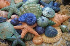 seashellfavors