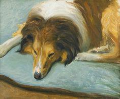 """Collie Tim Scott"" by Robert Thegerström, 1906 Shetland Sheepdog Puppies, Dog Poster, Rough Collie, Digital Museum, Puppy Pictures, Puppy Pics, Collaborative Art, Vintage Artwork, Sheltie"
