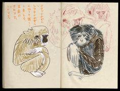 https://flic.kr/p/hF9rKo | 2013.11.19-04 | 京都 京都市動物園
