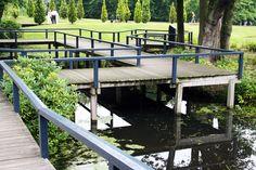 Deck boardwalk in the water garden