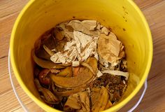 Last month, I started composting in my apartment. Here's how it's going.