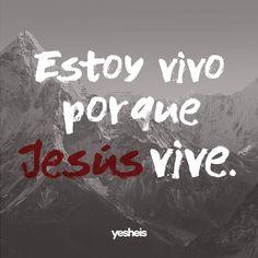 Así también vosotros consideraos #muertos al #pecado pero vivos para Dios en #Cristo #Jesús #Señor nuestro. #Romanos 6:11 RVR1960 #UnidosContraElEnemigo