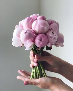 The bridal bouquet is one of the most important accessories on your wedding day. In this article you will find five factors to consider when making a choice of your bouquet on your wedding day. Peonies Bouquet, Pink Peonies, Floral Bouquets, Hand Bouquet Wedding, Wedding Bouquets, Wedding Flowers, Wedding Gowns, Wedding Flower Arrangements, Floral Arrangements