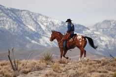 The Appaloosa Horse Club has registered more than 700,000 horses and 15,000 Appaloosa owners in 27 countries.