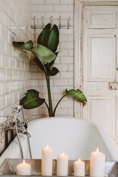 Menorca, Clawfoot Bathtub, Studio, House Styles, Sauna, Art Inspo, Inspiration, Bathrooms, Mad