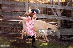 Stock Photo : Full Length Of Girl Running At Farm