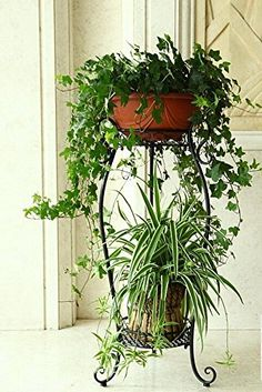 Tier: 2 Plant baskets: Exquisite engraved iron art and curve design to show a sense of elegance. 2 Pots Large Black Top And Bottom Floor Ironwork Plant Stand. Generous and practical, add more modern twist to your house. Hanging Plants, Potted Plants, Indoor Plants, Indoor Outdoor, House Plants Decor, Plant Decor, Tiered Plant Stand Indoor, Homemade Outdoor Furniture, Balcony Herb Gardens