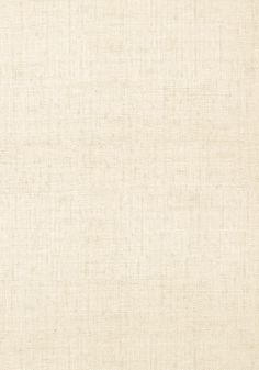 BANKUN RAFFIA, Off White, T14134, Collection Texture Resource 4 from Thibaut