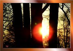 JESUS CHRISTUS, GOTTES WORT IN GOTTES WELT: Psalm 40:5 und Hebräer 10:35