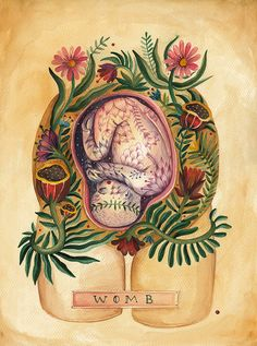 Womb Art Print Size - 40cm x 50cm by Hello Aitch. The miracle of birth. Beautiful.