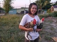 9 Gambar Ayam Terbaik Ayam Hewan Dan Variasi Makanan