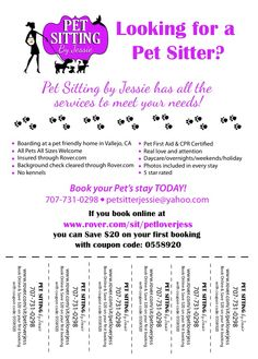pet sitting flyers