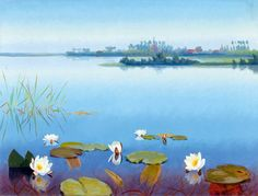 Dirk Smorenberg: Water lilies on the lake Loosdrecht nominated lr oil on canvas, 40x53 cm
