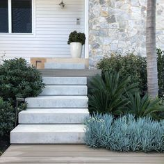 Raw concrete x wood Backyard Garden Landscape, House Landscape, Front Yard Landscaping, Landscape Design, Front Yard Garden Design, Modern Front Yard, Hill Country Homes, Tropical Backyard, Contemporary Landscape