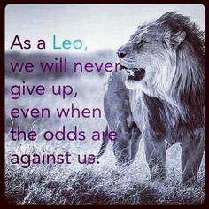 Leos never give up