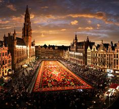 Brussels, Belgium, Flower carpet overview