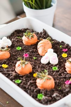 The dreamiest chocolate oreo bunny garden dessert for Easter! It's so easy that even the kids can make it!