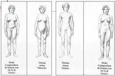 #PersonalTrainerBologna - Stefano Mosca analisi della composizione corporea permette di proporre e personalizzare il programma di #allenamento per #dimagrire e #tonificare  #fitness #dimagrimento #tonificazione