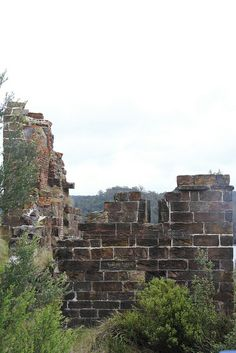 Penitentiary, Sarah Island, Tasmania Australia by adrienne_bartl, via Flickr