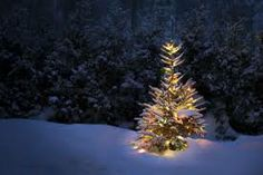 zwhen decorating for the big holiday party, neither forget nor overdress the outdoors. A single, simple tree with lights creates a romatic visual effect and garners introspective thoughts and quiet moments of sharing for guests.   Google Image Result for http://www.staples.com/sbd/cre/tech-services/images/res/is-it-ever-too-late-to-plan-for-the-holidays.jpg