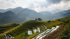 Rice fields on terraced by Chanwit Whanset on 500px