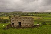 4116-479 Barn in a field Yorkshire Dales Yorkshire England