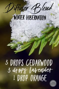 Get ready for a winter hibernation with this relaxing diffuser blend of Cedarwood, Lavender and Orange.