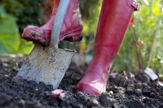 10-Must Have Garden Tools ~ via http://organicgardening.about.com/od/bookproductreviews/tp/musthavegardentools.htm?utm_source=pinterest&utm_medium=social&utm_campaign=shareurlbuttons
