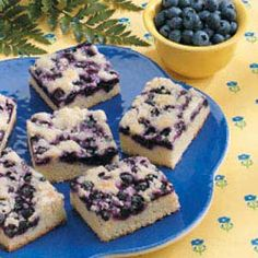 Blueberry Snack Cake ~ Nice picnic and party dessert.  Freeze fresh blueberries when they are in season so you can enjoy the summery flavor of this moist, tender cake all through the year!