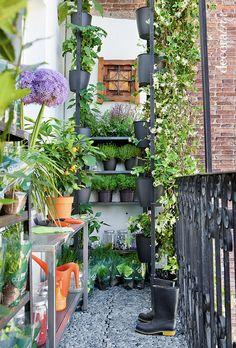 Jardines peque os on pinterest vertical gardens terrace for Jardines verticales en balcones