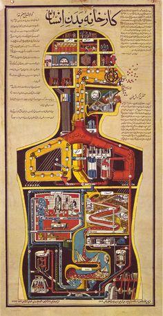 Autopsy of a Pinball Wizard - 50 Watts Vintage Posters, Vintage Art, Illustrations Médicales, Pinball Wizard, Human Body Art, Animal Adaptations, Japanese Drawings, Anatomy Art, Pixel