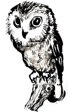 Owl art. Lovely!