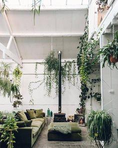 Les plantes s'installent dans le salon au mobilier vert