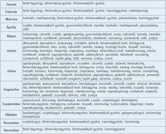 gyógynövény gyűjtési táblázat